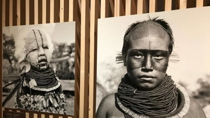 exposition amazonie le chamane et lesprit de la foret