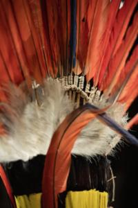 exposition amazonie le chamane et la pensee de la foret