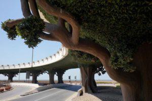 mario de la curto pont et arbres dubaï