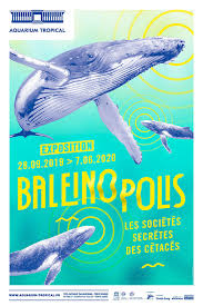 baleinopolis