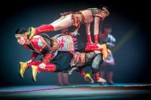 cirque phénix etoiles de mongolie