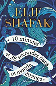 10 minutes et 38 secondes dans ce monde étrange elif shafak