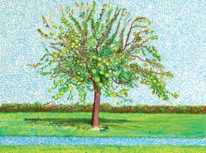 david hockney apple tree
