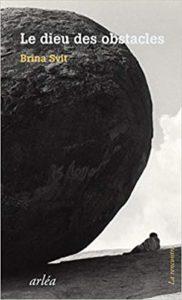couverture livre le dieu des obstacles