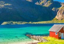 Norvège pom poko